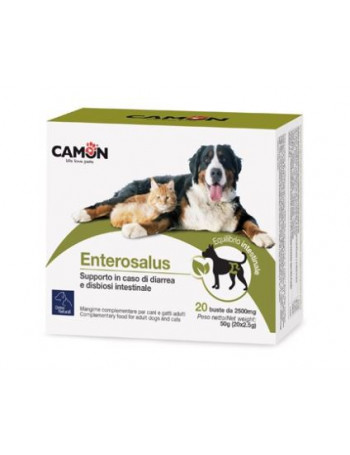 ENTEROSALUS 20BUST 2,5G CAMON | FarmaciaRisparmio.it
